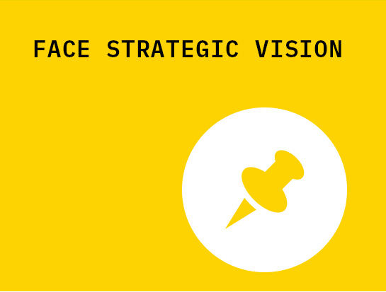 face_strategic_vision